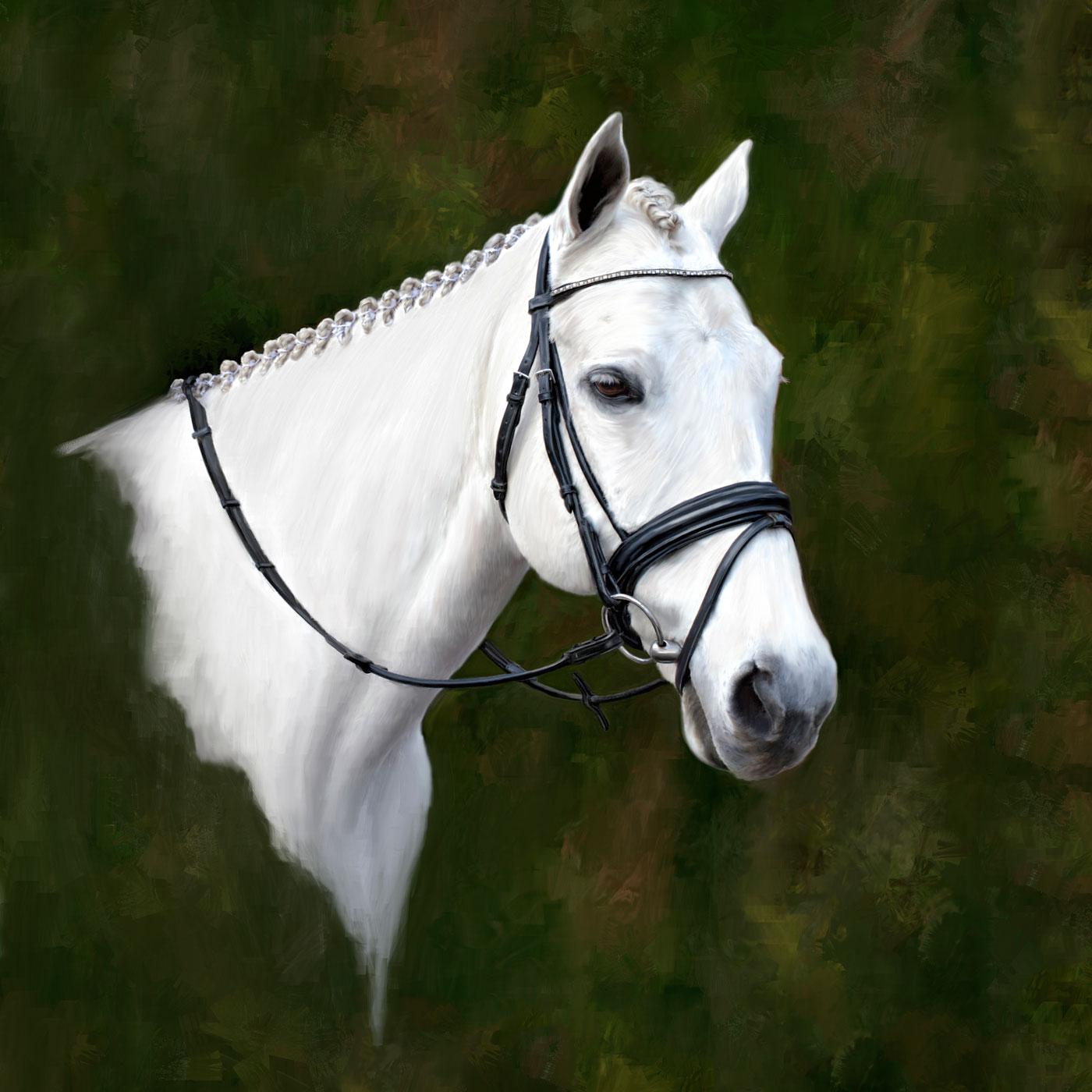 white horse web